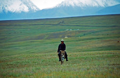 A lone Kyrgyz rides the donkey in the Alay valley Stock Photography