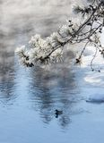 Minus 34 celsius at the pond stock photo