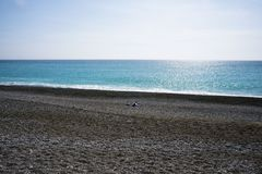 A lone man on a deserted pebble beach on the Cote d`Azur. Rest and relaxation by the sea. royalty free stock photo