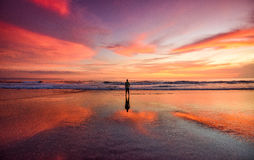 A lone man standing on a beach at sunset Royalty Free Stock Photos