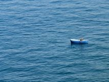 Lone mans sail. Lone man sailing in Sorrento Italy Royalty Free Stock Images