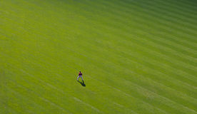 Lone outfielder Stock Image