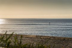 Lone paddle boarder on a calm sea in the afternoon. On a calm evening royalty free stock photo
