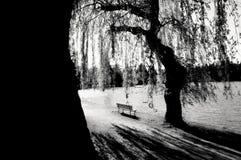 lone park för bänk Arkivbild