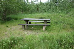 A lone picnic bench at a forest in the rocky mountains. Stock Photos