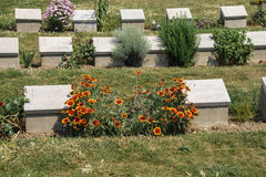 Lone Pine memorial cemetery Royalty Free Stock Image