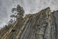 Lone pine tree on the edge of a cliff on the background of dramatic sky Stock Photo