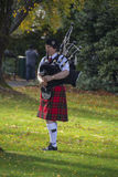 Lone piper Stock Images