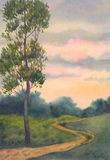 Lone poplar near trails Stock Photo