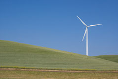 Lone Power Generating Windmill. White Electrical Power Generating Wind Turbines on Rolling Hills of Wheat, Beneath Spring Clouds California royalty free stock photos