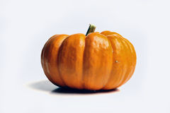 Lone pumpkin. Yellow pumpkin on solid white background Royalty Free Stock Photography