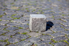 Lone quadrangular stone on the pavement. The gray element paving stone, made in the form of a cube stock photos