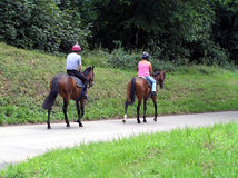 Lone Rider's. Exercising their mount's in the English countryside Stock Photography