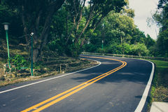 Lone road royalty free stock images