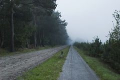 Lone sand road and bicycle road leading toward mist forest. While the mist is loosing it's battle with the sun I managed to shoot this shot, where the road royalty free stock image