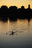 Lone sculler Stock Images