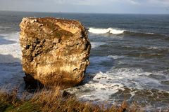 Lone Sea Rock. Stock Images
