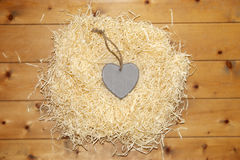 Lone single heart in a love nest Stock Image
