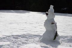 lone snowman för fält arkivfoto