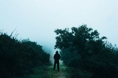 A lone spooky hooded figure standing on a path in the countryside on a foggy, rainy day. With a muted, grainy blue edit.  stock photo