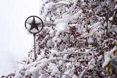 Lone star garden art - snow horiz. Royalty Free Stock Image