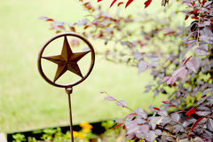 Lone star garden art Royalty Free Stock Photos