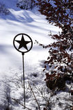 Lone star garden in winter - vertical. Snow drifts overlay this Texas garden in winter. Sunshine offers high contrast between natural elements Royalty Free Stock Photo