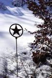 Lone star garden in winter - vertical Royalty Free Stock Photo