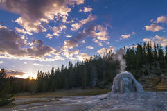 Lone Star Geyser Stock Images