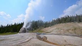 Lone Star Geyser Yellowstone. Lone Star Geyser during eruption Yellowstone National Park stock footage