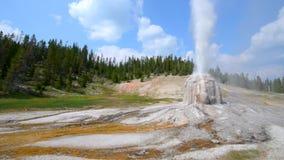 Lone Star Geyser Yellowstone. Lone Star Geyser during eruption Yellowstone National Park stock video footage