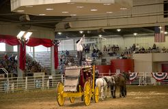Lone star stampede show at State Fair Texas 2017 Royalty Free Stock Photo