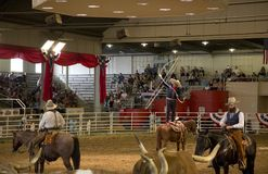 Nice Lone star stampede show at State Fair Texas 2017. Lone state stampede show at State Fair Texas  ,city Dallas  USA 2017 Stock Images