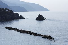 Lone swimmer, Ligurian coast Royalty Free Stock Images
