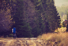 Lone traveler with a backpack walking along the road through the forest in the mountains. Stock Photos
