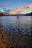The Lone Tree Famous Lake Wanaka Landmark stock photography