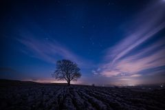 The lone tree at Malham by night. A lone tree amonst limestone pavement on the hills above the village of Malham in the Yorkshire Dales Stock Image