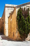 Lone tree on the maltese street Royalty Free Stock Photos