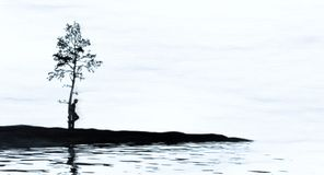 Lone tree and man. Isolated man by a cold stark shoreline Royalty Free Stock Photo