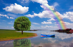 Lone tree and rainbow Stock Photo
