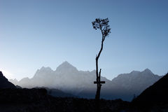 Lone Tree Silhouette In Himalaya Mountains, Nepal Royalty Free Stock Photography
