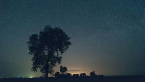 Lone tree star time lapse stock video footage