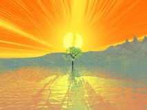 Lone tree at sunset. Illustration of a lone tree in front of an isle with a bright orange sunset in the background Stock Photos