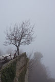 Lone tree on top of a mountain. Royalty Free Stock Photos