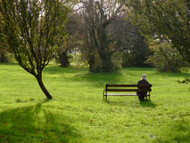 Lone woman in a park. A lone woman sitting on a bench in a park Stock Image