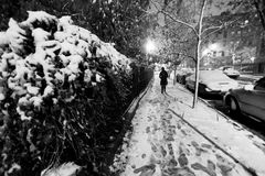 Lone woman walking on the snow covered pavement of a Harlem stre. Et on a freezing snowstorm night Stock Photos