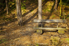 Lone wooden bench Royalty Free Stock Images
