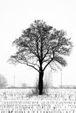 Loneliness Royalty Free Stock Images