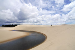 Loneliness. Pequenos Lencois National Park, one of the most beautiful park in Brazil Stock Images