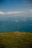 Loneliness. Beautiful peak in Bucegi Mountains, Romania. Loneliness - pure form royalty free stock images